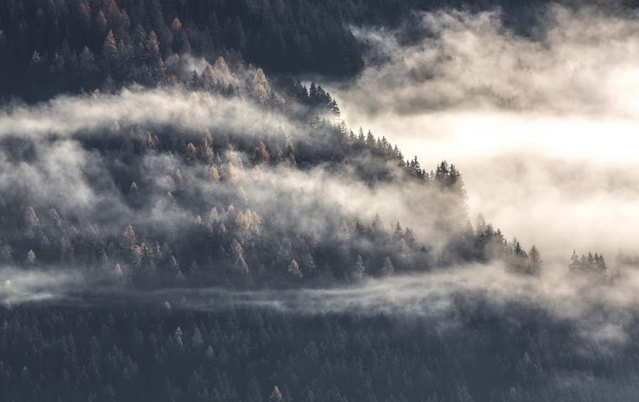 フリー写真 雲のかかる山の木々の風景