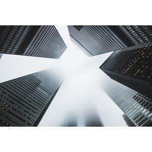 フリー写真, 風景, 建造物, 建築物, 高層ビル, 都市, 街並み(町並み), 霧(霞), カナダの風景, トロント
