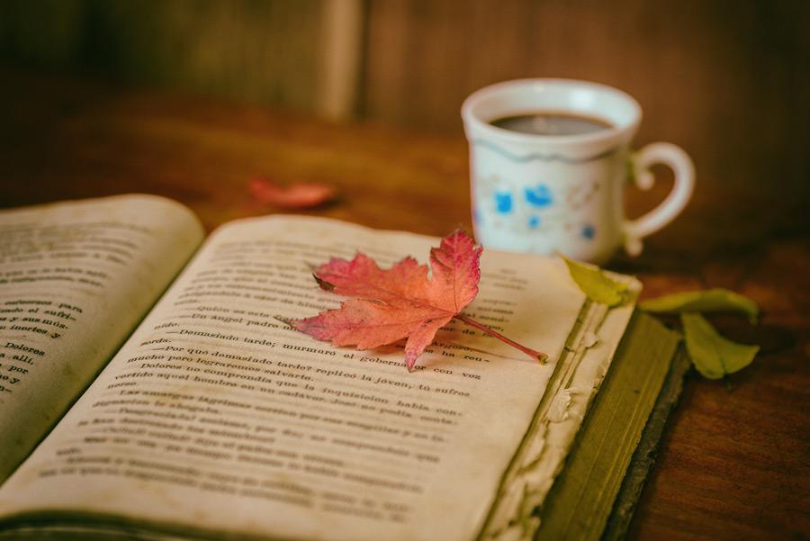 フリー写真 本の上の落ち葉とコーヒー