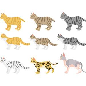 フリーイラスト, ベクター画像, AI, 動物, 哺乳類, 猫(ネコ), 茶トラ猫, キジトラ猫, サバトラ猫, 茶白猫, キジ白猫, サバ白猫, アメリカン・ショートヘア, ベンガル猫, スフィンクス(猫)