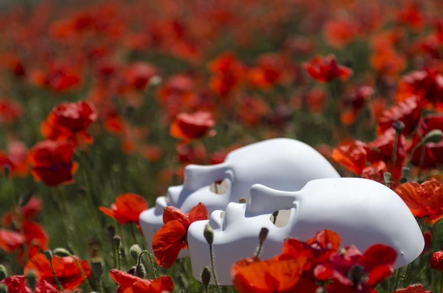 フリー写真 仮面とヒナゲシの花畑