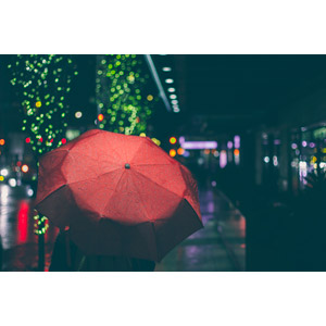 フリー写真, 人と風景, 夜, ネオン, 傘, 夜景