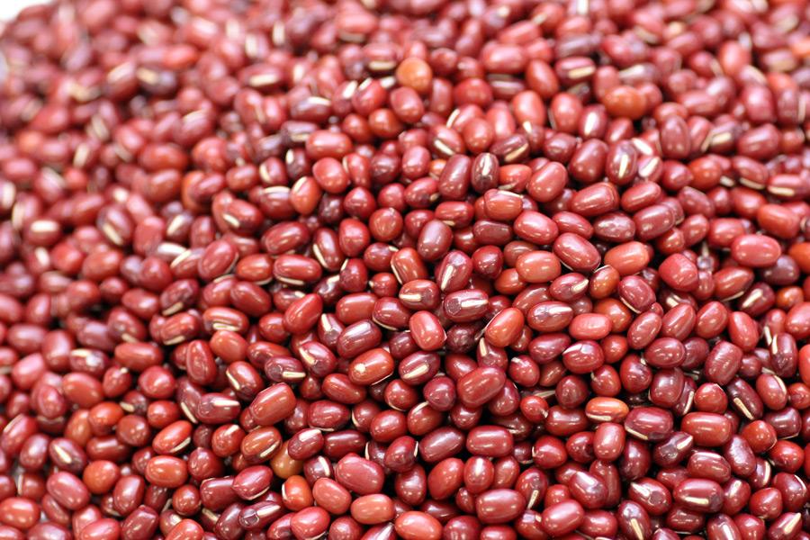 フリー写真 小豆の実