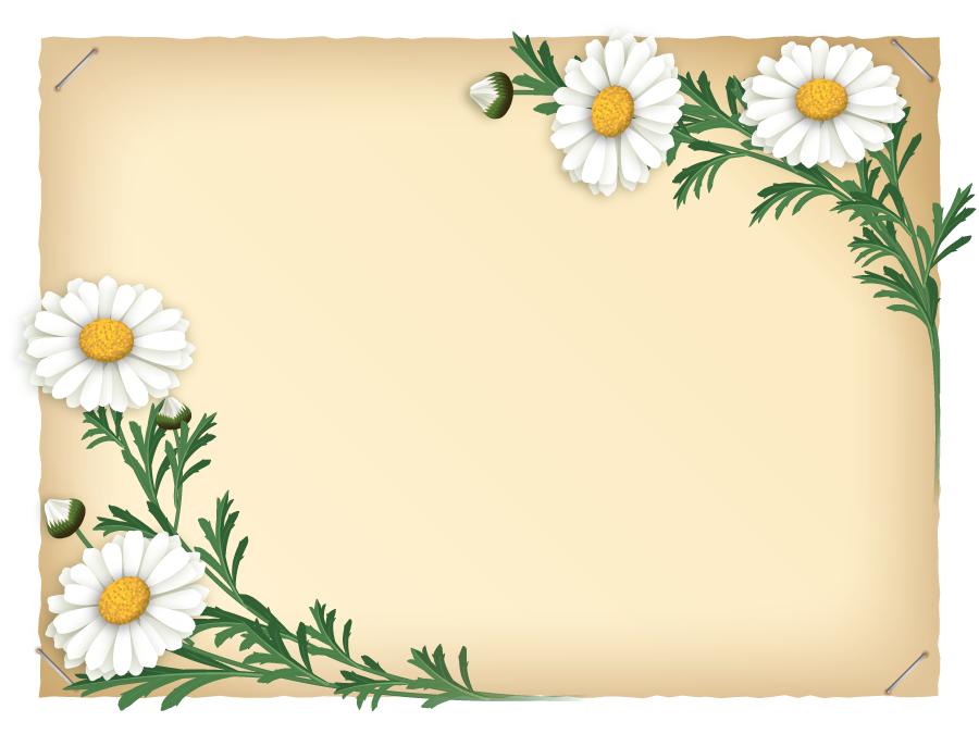 フリーイラスト マーガレットの飾り枠