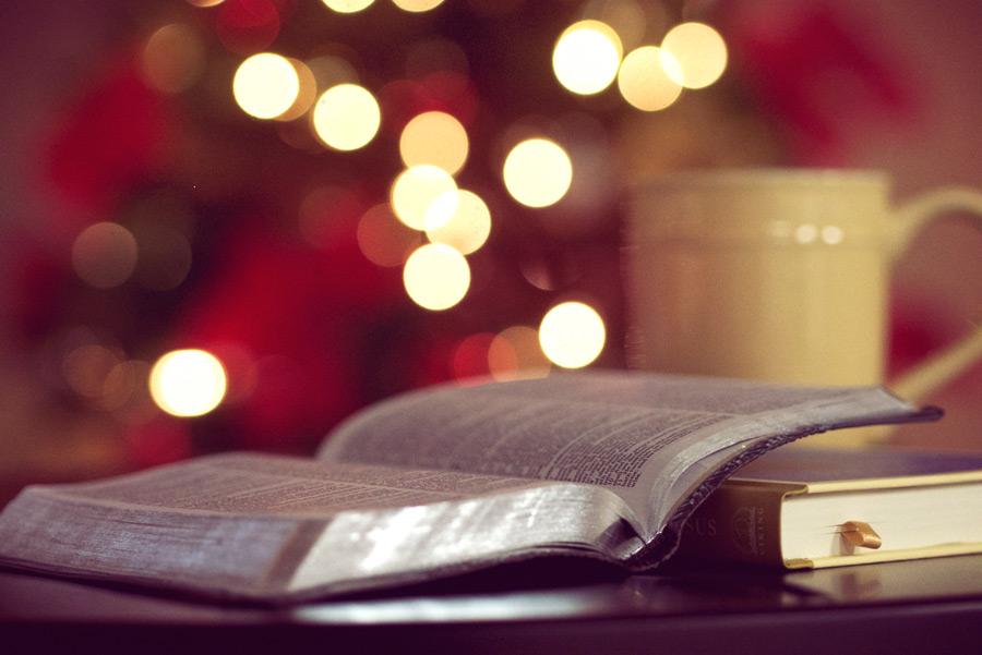 フリー写真 クリスマスツリーの電飾と聖書