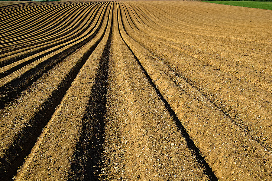 フリー写真 盛土された畑の風景