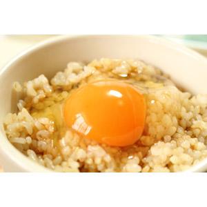 フリー写真, 食べ物(食料), 料理, 卵料理, 米料理, 日本料理, 和食, 卵かけご飯, 玄米