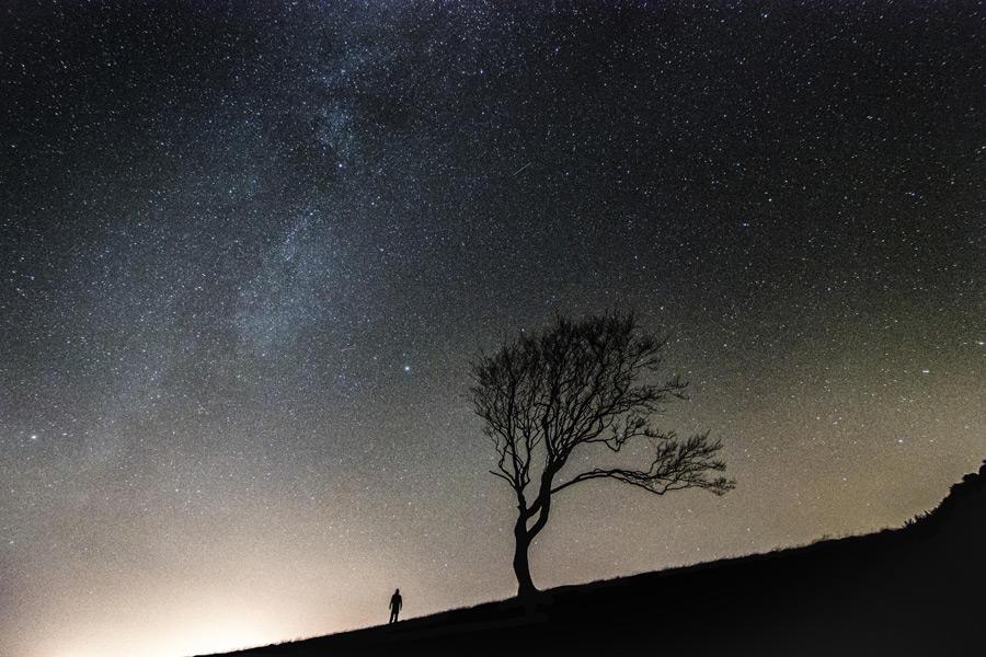 フリー写真 木と人と天の川の風景