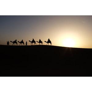 フリー写真, 風景, 砂漠, サハラ砂漠, 夕暮れ(夕方), 夕日, 人と風景, 人と動物, シルエット(人物), シルエット(動物), ラクダ, モロッコの風景