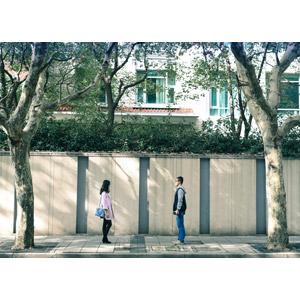 フリー写真, 人物, カップル, 恋人, 向かい合う, 二人, 樹木, 人と風景