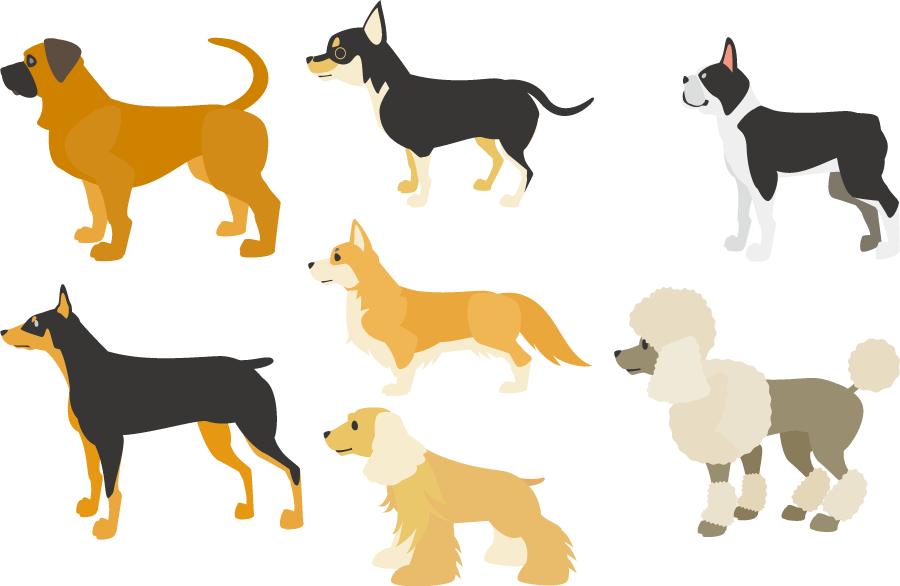 フリーイラスト チワワなどの7種類のイヌのセット