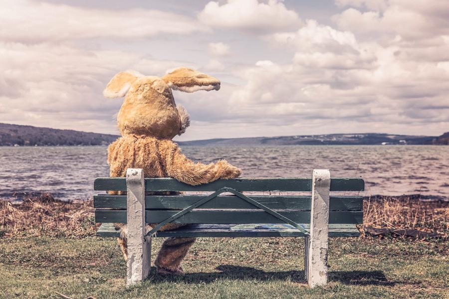 フリー写真 ベンチに座る着ぐるみのウサギ