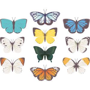 フリーイラスト, ベクター画像, EPS, 動物, 昆虫, 蝶(チョウ), アゲハチョウ
