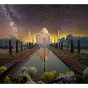 フリー写真, 風景, 建造物, 建築物, 廟, タージ・マハル, 世界遺産, インドの風景, 星(スター), 夜, 天の川, フォトレタッチ, 花