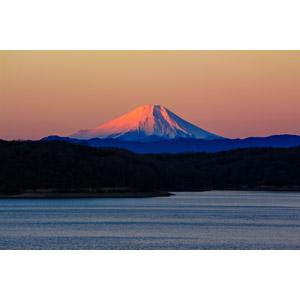 フリー写真, 風景, 自然, 山, 富士山, 埼玉県, 赤富士, 朝焼け, 世界遺産, 日本の風景, 湖