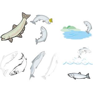 フリーイラスト, ベクター画像, AI, 動物, 魚類, 魚(サカナ), 鮭(サケ), ジャンプ(動物), 魚介類