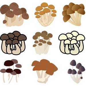 フリーイラスト, ベクター画像, AI, 食べ物(食料), 食用キノコ, 茸(キノコ), 菌類, シメジ
