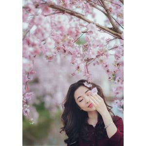 フリー写真, 人物, 女性, アジア人女性, ベトナム人, 女性(00147), 人と花, 桜(サクラ), ピンク色の花, 目を閉じる