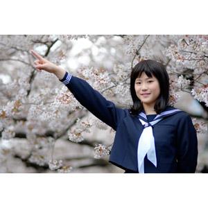 フリー写真, 人物, 少女, アジアの少女, 日本人, 少女(00048), 学生(生徒), 高校生, セーラー服(学生服), 指差す, 目標, 左上を指す, 桜(サクラ), 春, 人と花