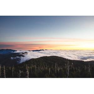 フリー写真, 風景, 自然, 雲, 雲海, 山, 朝焼け, アメリカの風景, ノースカロライナ州, テネシー州