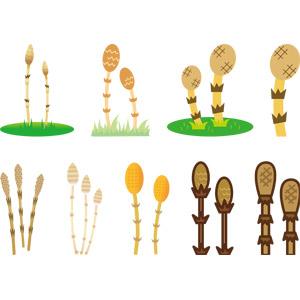 フリーイラスト, ベクター画像, AI, 植物, 土筆(ツクシ), スギナ, 春