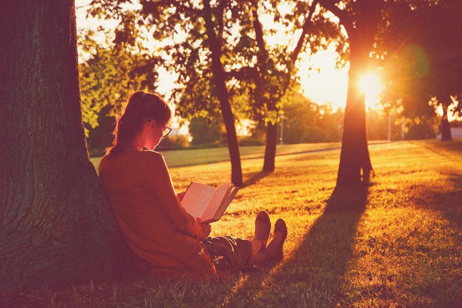 フリー写真 夕日と公園で本を読んでいる外国の少女