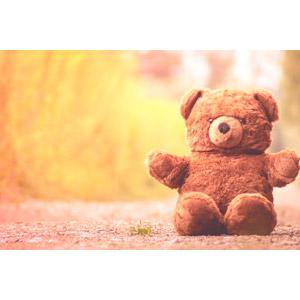 フリー写真, 玩具(おもちゃ), ぬいぐるみ, テディベア