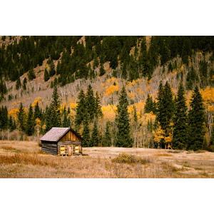 フリー写真, 風景, 小屋(納屋), 樹木, 紅葉(黄葉), アメリカの風景, コロラド州