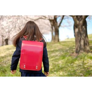 フリー写真, 人物, 子供, 女の子, アジアの女の子, 日本人, 女の子(00119), 学生(生徒), 小学生, 後ろ姿, ランドセル, 桜(サクラ), 春, 人と花