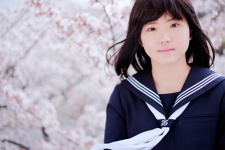 フリー写真 桜の花と風に吹かれる女子高生