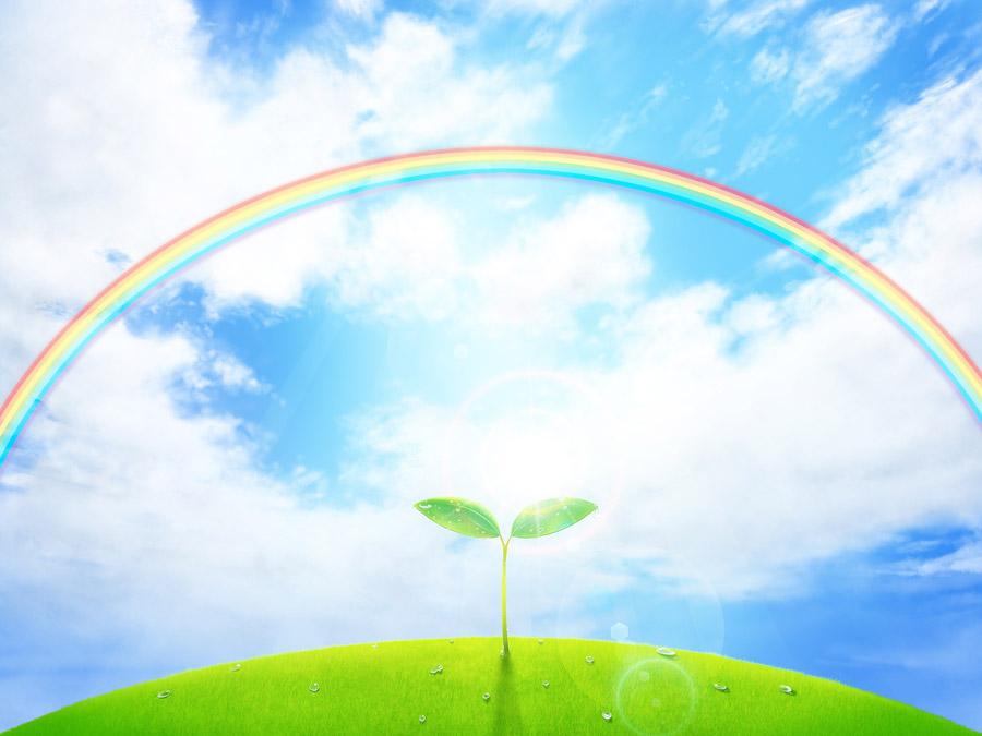 フリーイラスト 青空と虹と新芽の風景