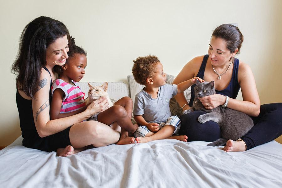 フリー写真 二組の母と子と猫