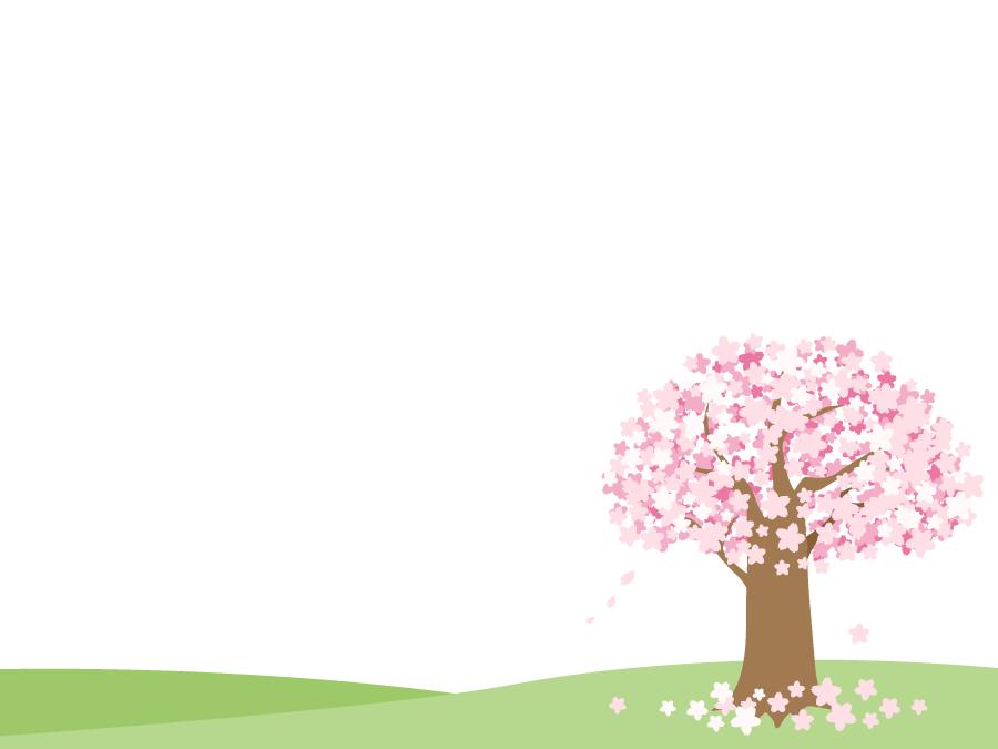 フリーイラスト 満開の桜の木の背景
