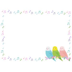フリーイラスト, ベクター画像, AI, 背景, フレーム, 囲みフレーム, 音楽, 音符, カラフル, 動物, 鳥類, 鳥(トリ), インコ