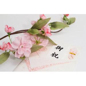 フリー写真, 学校, 入学式, 卒業式, のし袋, 桜(サクラ), 3月, 4月, プレゼント