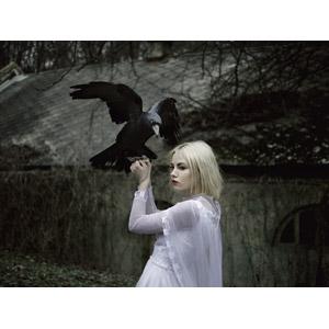 フリー写真, 人物, 女性, 外国人女性, ウクライナ人, 金髪(ブロンド), 人と動物, 動物, 鳥類, 鳥(トリ), 烏(カラス)