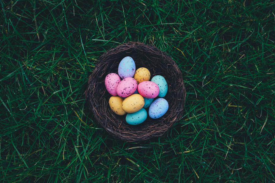 フリー写真 巣の中のカラフルな卵
