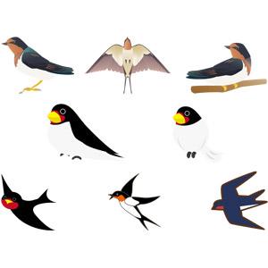 フリーイラスト, ベクター画像, AI, 動物, 鳥類, 鳥(トリ), 燕(ツバメ)
