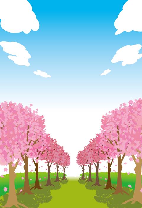 フリーイラスト 満開の桜並木の風景