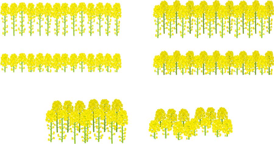 フリーイラスト 6種類の菜の花畑のセット