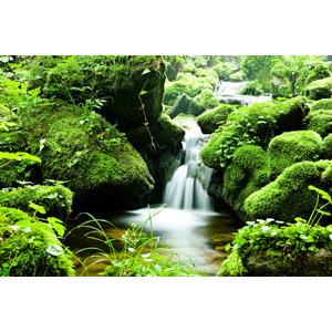 フリー写真, 風景, 自然, 河川, 渓流, 滝, 苔(コケ), 緑色(グリーン)