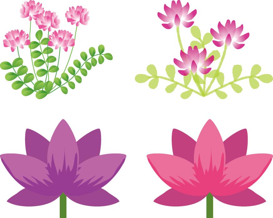 フリーイラスト 4種類のれんげの花のセット
