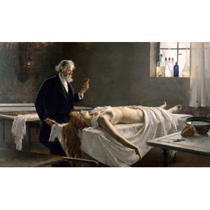 フリー絵画, エンリケ・シモネ, 解剖, 人体, 心臓, 人物, シニア男性, 医療