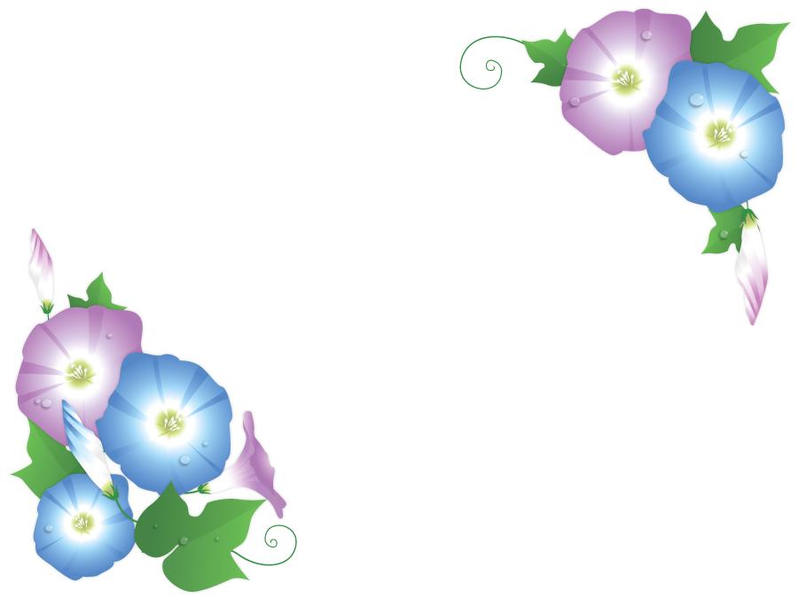 フリーイラスト あさがおの花と蕾の飾り枠