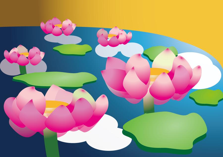 フリーイラスト 池に咲く蓮の花