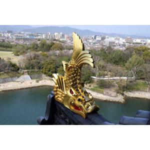 フリー写真, 風景, 鯱(しゃちほこ), 彫像, 岡山城, 日本の風景, 岡山県