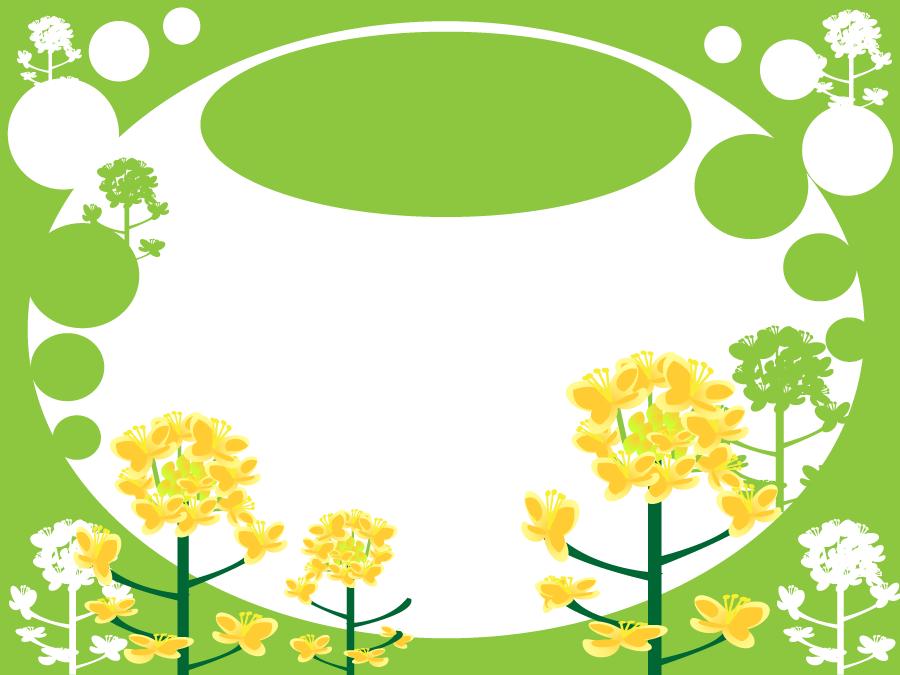 フリーイラスト 菜の花の背景