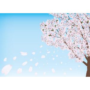 フリーイラスト, ベクター画像, AI, 風景, 自然, 樹木, 花, 桜(サクラ), 桜吹雪, 春, 花びら