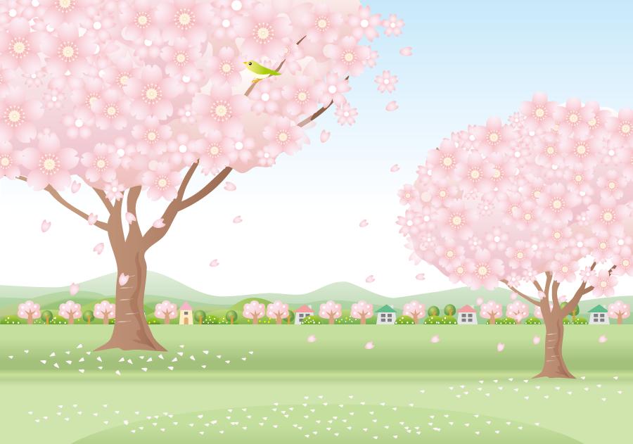 フリーイラスト 二本の桜の木と舞い散る花びらの風景
