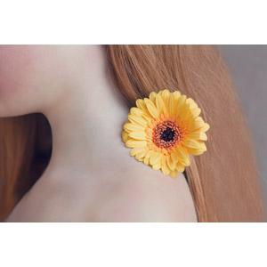フリー写真, 植物, 花, ガーベラ, オレンジ色の花, 人と花, 髪の毛, 首